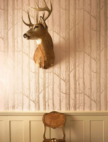 cole&son-whimsical-woods-cropped-wallpaper-galleriamia